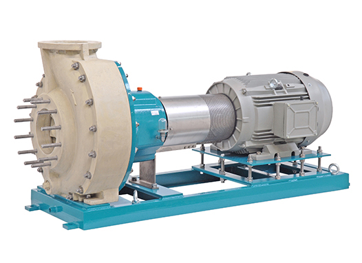Horizontal Mechanical Seal Pumps